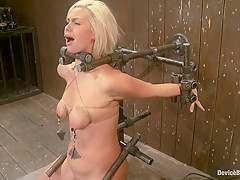 Tara Lynn Fox Our hot little 19yr old is back and trapped on a Sybian
